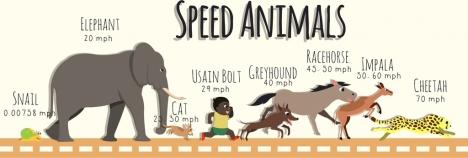 animals speed analysis background colored cartoon decoration