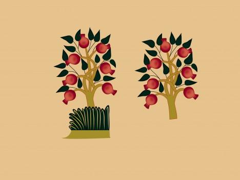 - armenian_ornamental_pomegranate_tree_20126