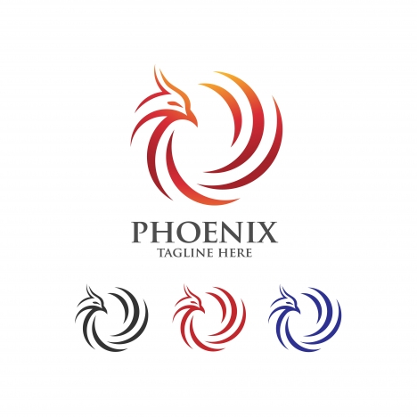 best phoenix logo concept