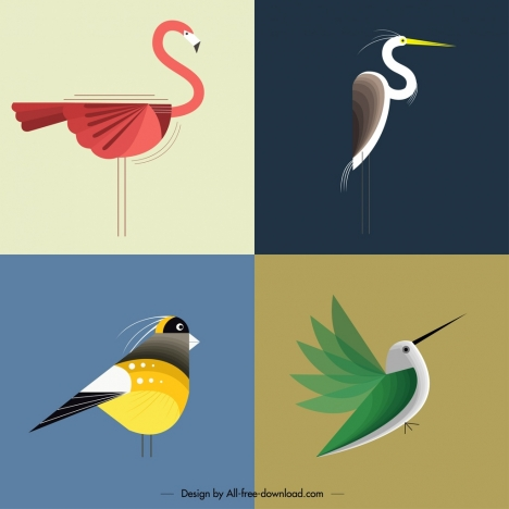 bird background templates colored flat classical design