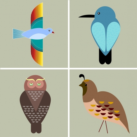 bird icons collection various flat colored types
