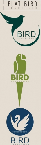 bird logo collection various colored flat design