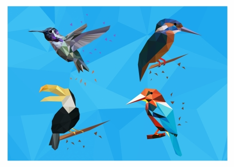 birds collection isolated with low poly design