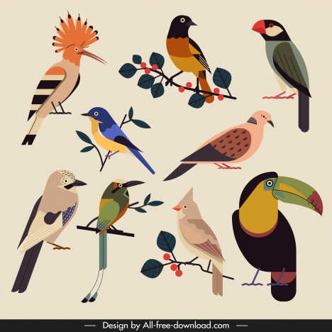 birds species icons colorful classical design
