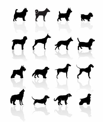 Black Symbols - Dogs