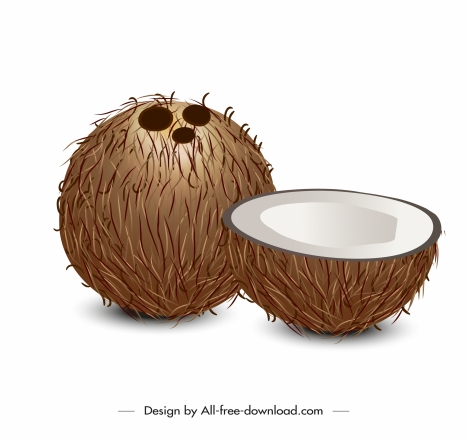 coconut icon modern 3d sketch