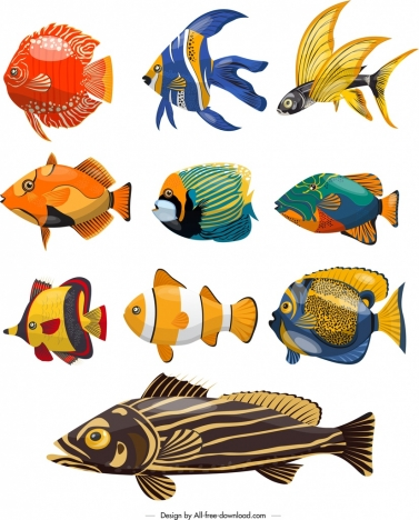 fishes species icons colorful design