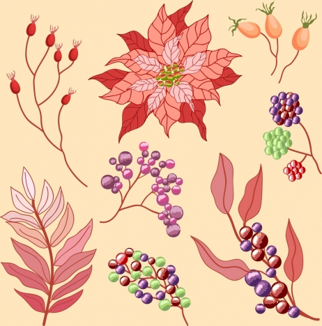 flowers design elements classical colored decor