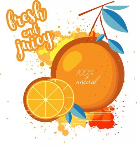 fresh fruit background orange slice icon colored grunge