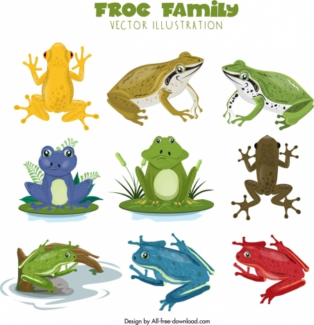 frog species icons collection colorful cartoon design