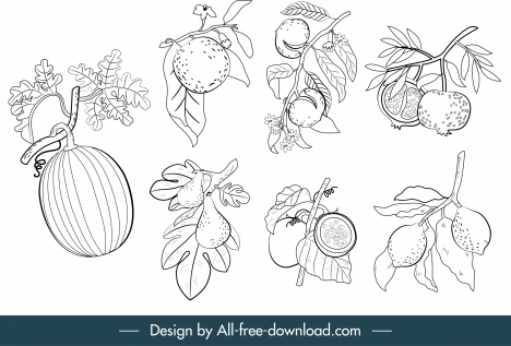 fruits icons black white classic handdrawn sketch