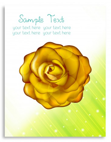 gold rose vector on card design