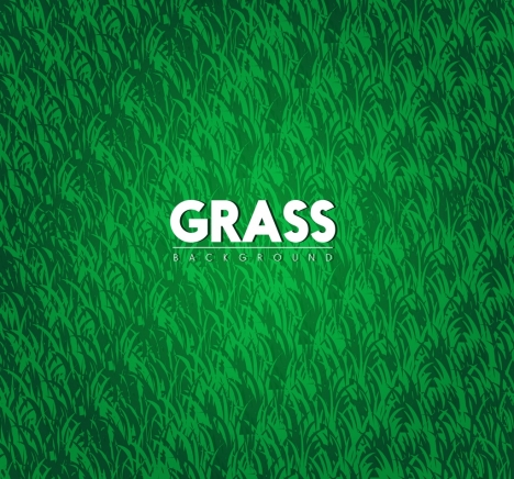 grass background bright green decoration
