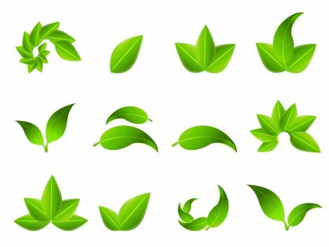 Green Leaf Icons