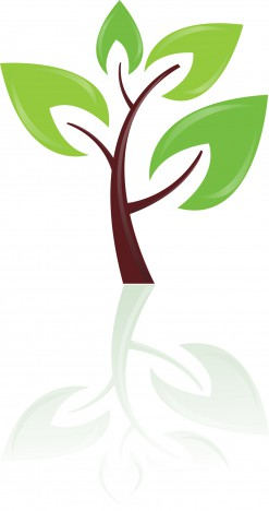 Green tree design element