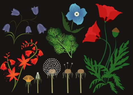 herbal icons background various multicolored flora decoration
