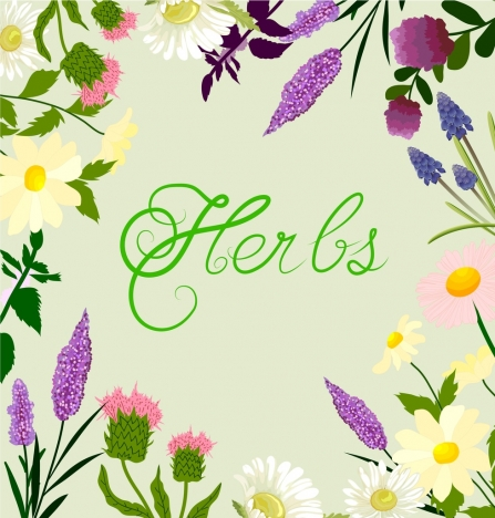 herbs background colorful flowers decoration calligraphic design