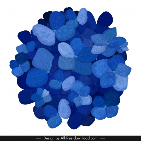 hortensia flower icon blue blooming petals sketch