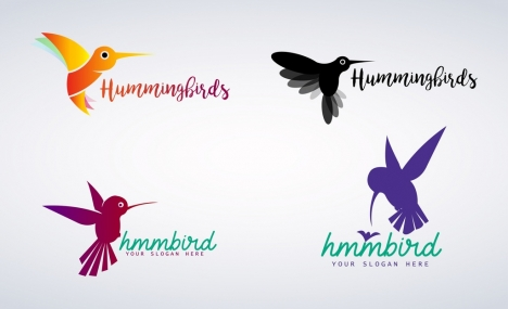 hummingbird logotypes various colored flat isolation