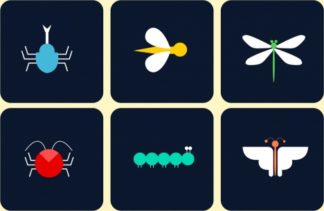 insect icons isolation colored flat design
