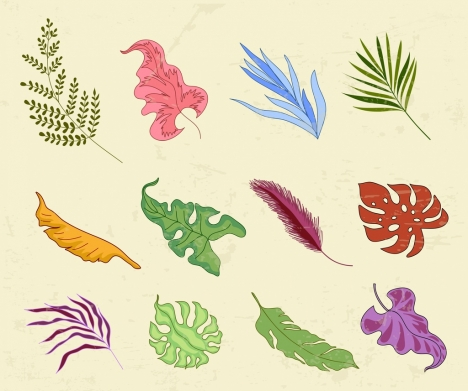 leaf icons collection multicolored shapes design