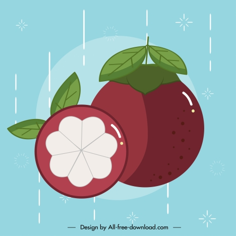 mangosteen icon colored classic flat sketch