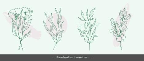 nature design elements handdrawn flower leaf sketch