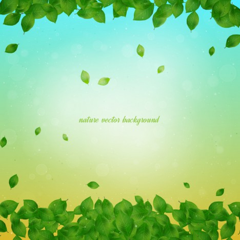 nature leaf background