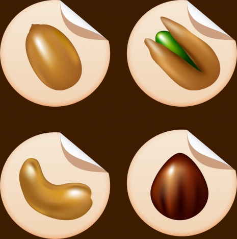 nuts icons isolation shiny 3d design