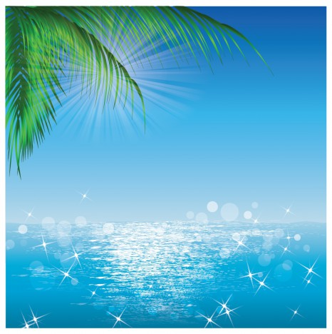 Ocean Sun Reflections and Palmleaves
