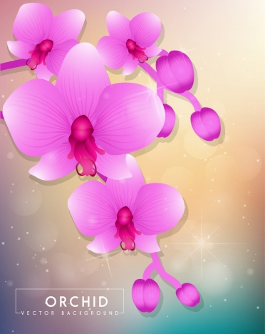 orchids background sparkling violet decoration