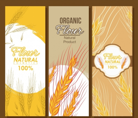 organic flour banner templates cereal icons sketch