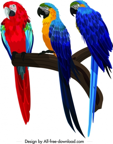 parrots painting perching bird school icon colorful design
