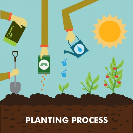planting process concept illustration with colored flat style