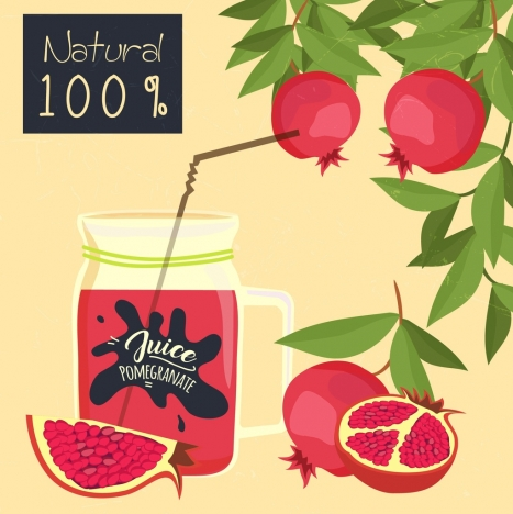 pomegranate advertising fruit glass jar icons classical design