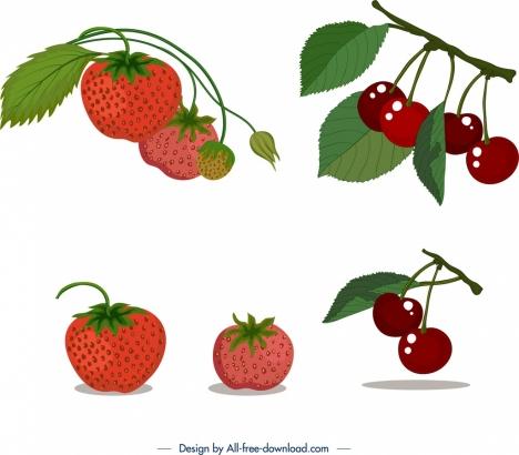 ripe fruits icons strawberry cherry design
