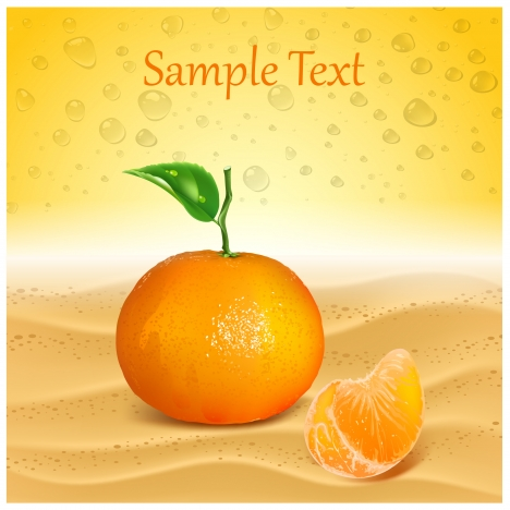 template vector with fresh orange background