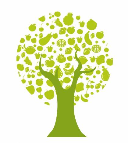 Tree Fruit Icons