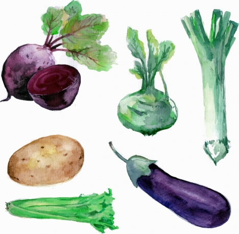vegetables icons watercolored handdrawn sketch