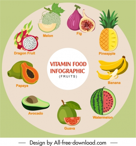 vitamin food infographic banner colorful emblems circle layout
