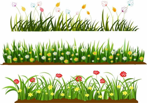 wild grass flowers templates colorful cartoon design