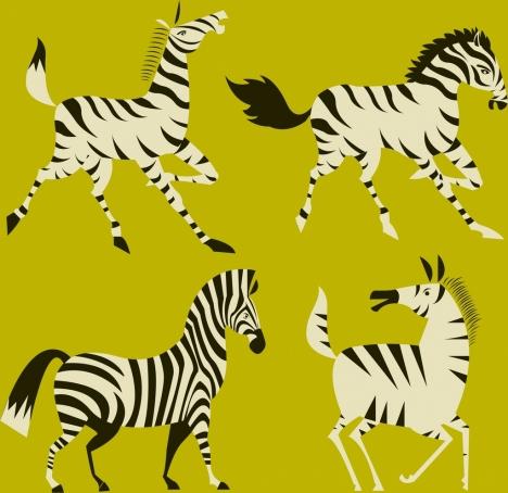 zebra icons collection colored cartoon design