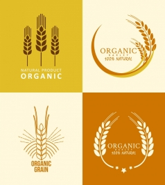 agriculture product logotypes barley icons flat design