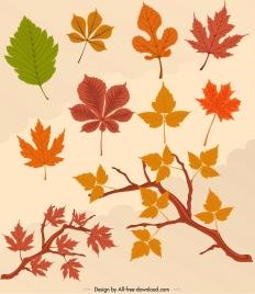 autumn design elements colored leaves icons decor