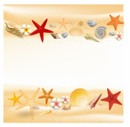 Background with seashells and starfishes