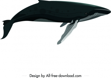 big whale icon colored cartoon sketch