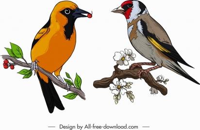 birds icons colorful tailorbird sparrow sketch