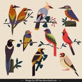 birds species icons classical multicolored flat sketch