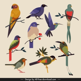 birds species icons colorful classical sketch