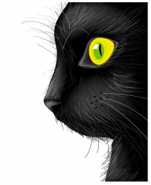 black cat face with bright eye